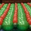 Ballonnenhuis van de kerstman