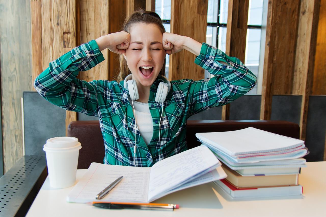 happy homework beverwijk